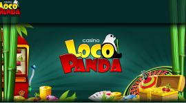loco-panda-